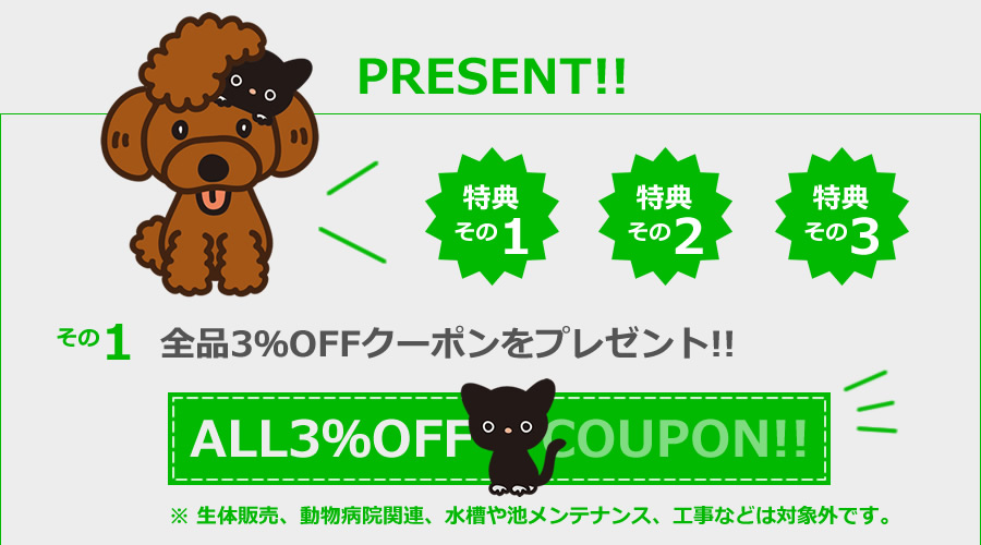 特典その1:全品3%OFFクーポンをプレゼント!!!